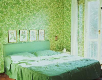Giovanni Ozzola, camera verde, 2003