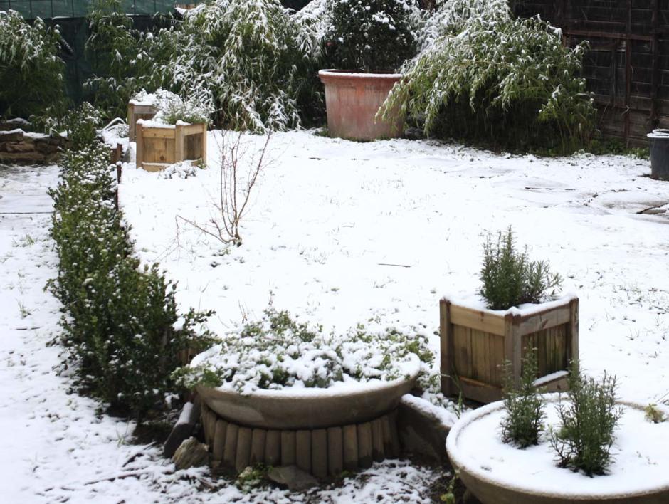 melampo inverno+neve  x sito